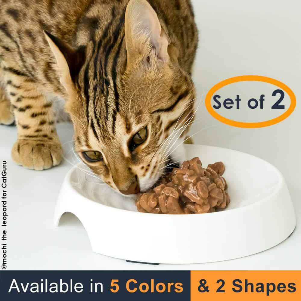 Premium Whisker Stress-Free Cat Food Bowl by CatGuru