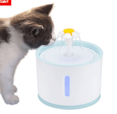 Automatic Pet Fountain Water Dispenser