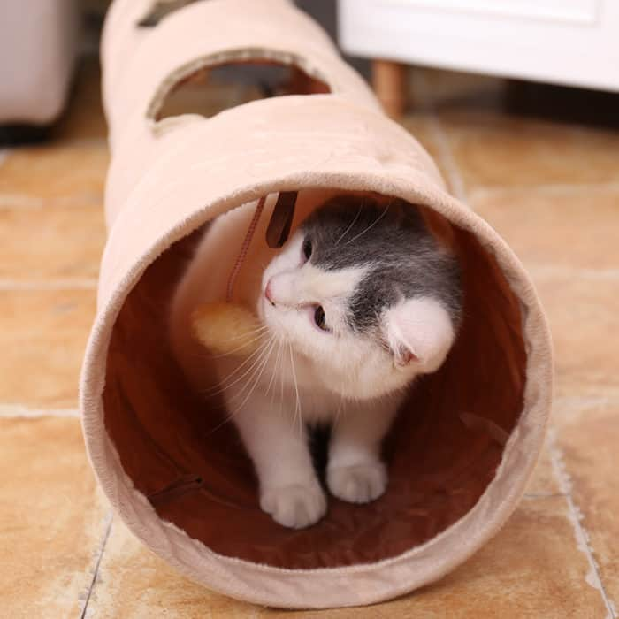 Cat Tunnel Foldable Interactive Toy For Your Pet