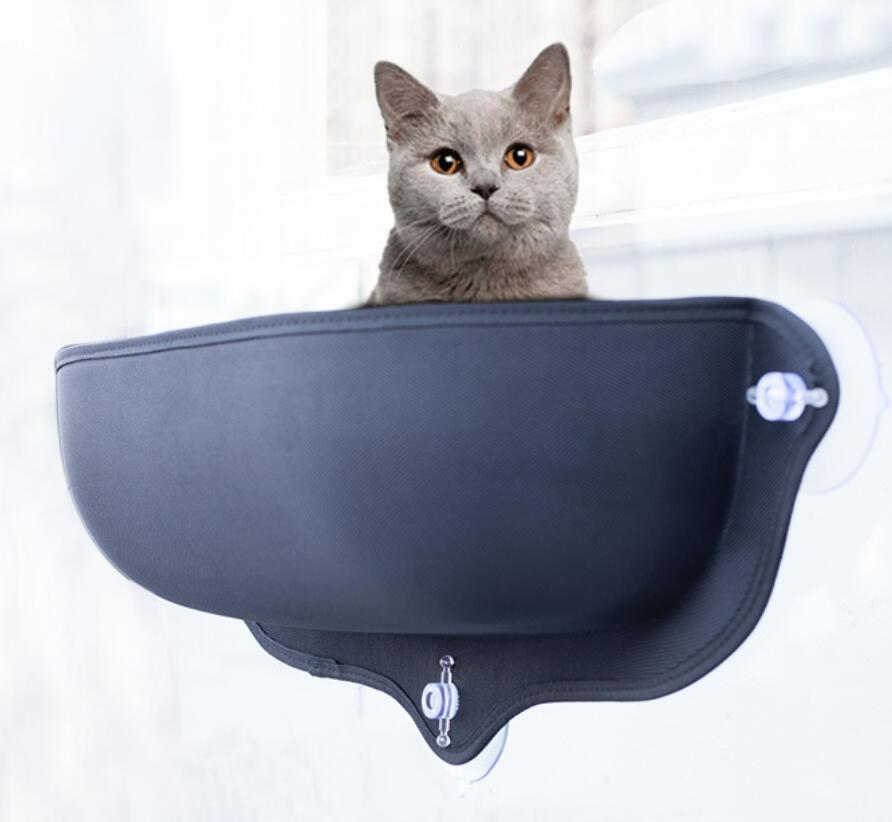 The Best Cat Beds (According To Our Cats)