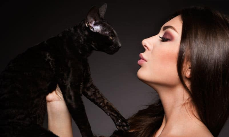 Amazing Cat Facts You May Not Know About